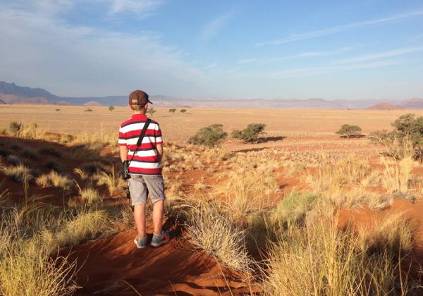 Searching for Dune Lark on Elim Dune