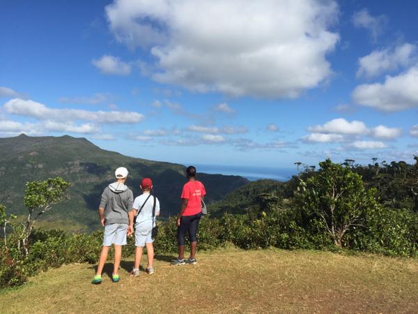 Birding the Macchabee Forest Trail