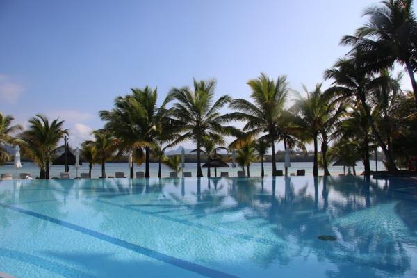 Palm trees and sunshine
