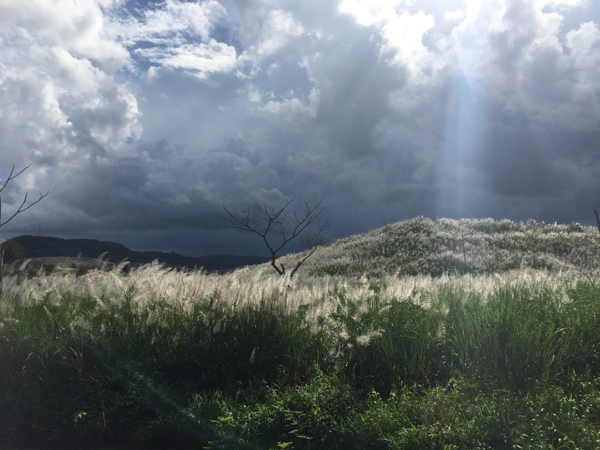 Summit Ponds with a storm brewing