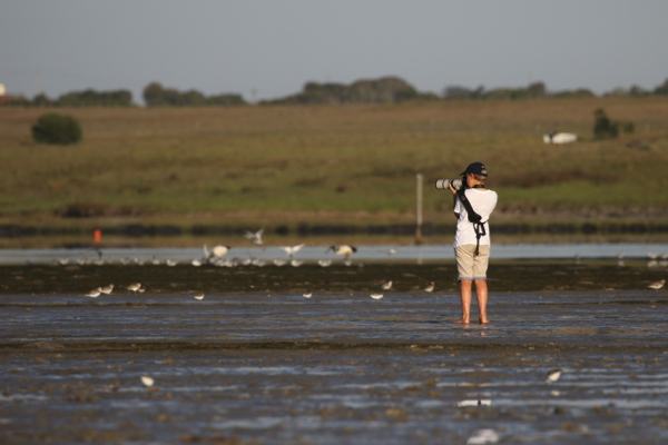 Adam photographing waders on the Kromme