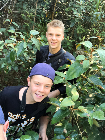 Adam and Tommy in the Bontanical Gardens (literally)